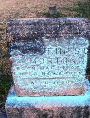 MORTON, FINES O - Crawford County, Arkansas | FINES O MORTON - Arkansas Gravestone Photos