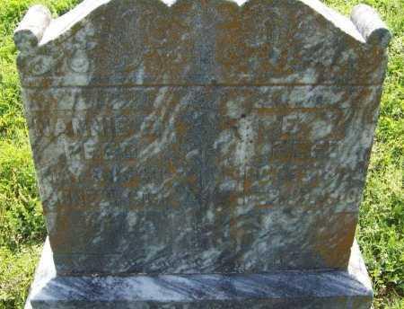 REED, E T  - Crawford County, Arkansas | E T  REED - Arkansas Gravestone Photos