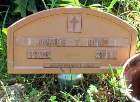REED, JAMES T - Crawford County, Arkansas | JAMES T REED - Arkansas Gravestone Photos