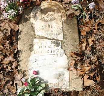 SPEARS, ELIZABETH - Crawford County, Arkansas | ELIZABETH SPEARS - Arkansas Gravestone Photos