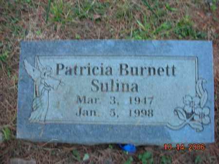 BURNETT SULINA, PATRICIA - Crawford County, Arkansas | PATRICIA BURNETT SULINA - Arkansas Gravestone Photos