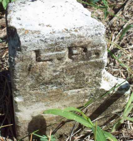 UNKNOWN, L P - Crawford County, Arkansas | L P UNKNOWN - Arkansas Gravestone Photos