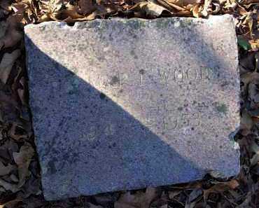 WOODS, DELMAR F. - Crawford County, Arkansas   DELMAR F. WOODS - Arkansas Gravestone Photos