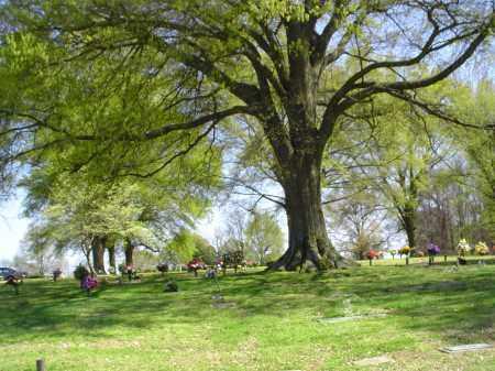 *CRITTENDEN MEMORIAL PARK OVER,  - Crittenden County, Arkansas |  *CRITTENDEN MEMORIAL PARK OVER - Arkansas Gravestone Photos