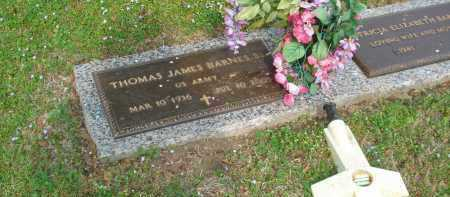 BARNES, SR (VETERAN), THOMAS JAMES - Crittenden County, Arkansas | THOMAS JAMES BARNES, SR (VETERAN) - Arkansas Gravestone Photos