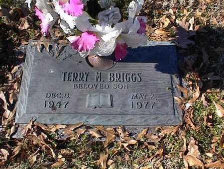 BRIGGS, TERRY M - Crittenden County, Arkansas | TERRY M BRIGGS - Arkansas Gravestone Photos