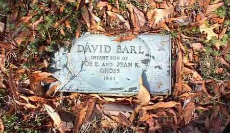 CROSS, DAVID EARL - Crittenden County, Arkansas | DAVID EARL CROSS - Arkansas Gravestone Photos