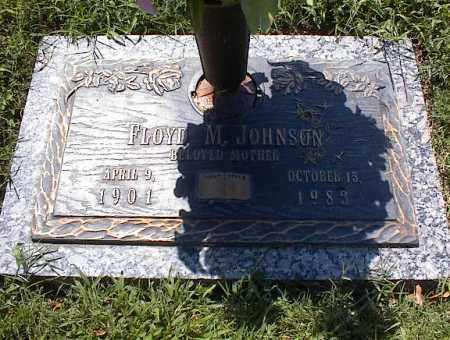 JOHNSON, FLOYD M - Crittenden County, Arkansas | FLOYD M JOHNSON - Arkansas Gravestone Photos