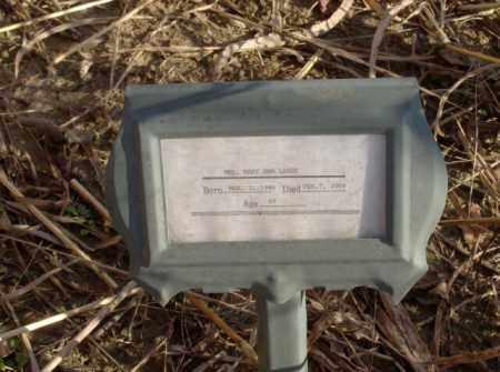 LARRY, MARY ANN - Crittenden County, Arkansas | MARY ANN LARRY - Arkansas Gravestone Photos