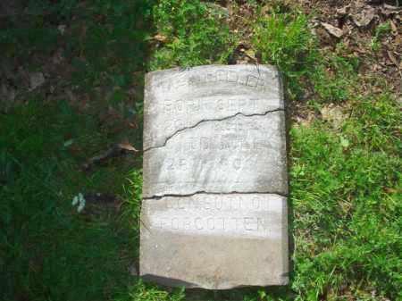 M. E., WHEELER - Crittenden County, Arkansas | WHEELER M. E. - Arkansas Gravestone Photos