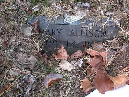 ALLISON, MARY - Cross County, Arkansas | MARY ALLISON - Arkansas Gravestone Photos