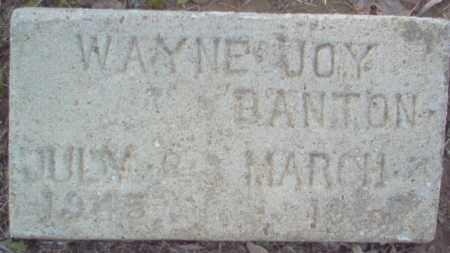 BANTON, WAYNE JOY - Cross County, Arkansas   WAYNE JOY BANTON - Arkansas Gravestone Photos