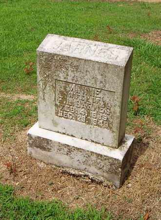 BARNES, MINNIE - Cross County, Arkansas | MINNIE BARNES - Arkansas Gravestone Photos