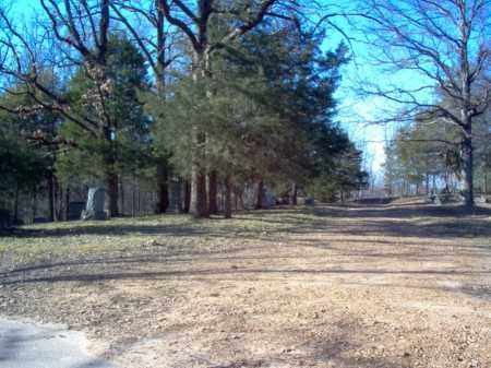 *BOWERS CEMETERY,  - Cross County, Arkansas |  *BOWERS CEMETERY - Arkansas Gravestone Photos