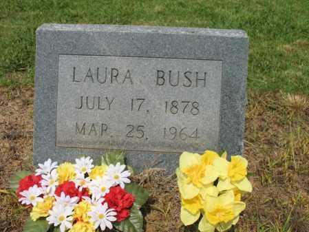 BUSH, LAURA - Cross County, Arkansas | LAURA BUSH - Arkansas Gravestone Photos
