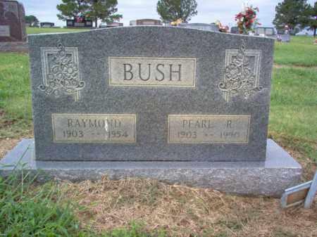 BUSH, RAYMOND - Cross County, Arkansas | RAYMOND BUSH - Arkansas Gravestone Photos