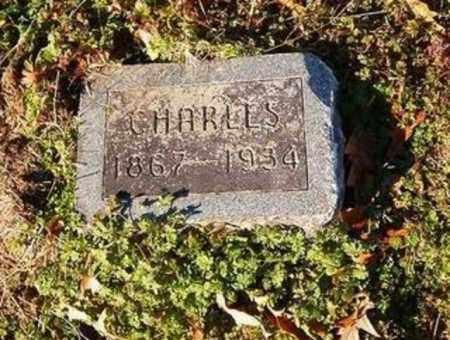 FLENTJE, CHARLES - Cross County, Arkansas   CHARLES FLENTJE - Arkansas Gravestone Photos