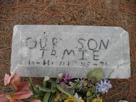 HANKINS, JAMIE - Cross County, Arkansas | JAMIE HANKINS - Arkansas Gravestone Photos