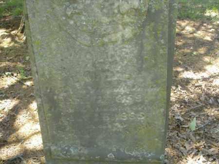 HEAD, MOLLIE - Cross County, Arkansas | MOLLIE HEAD - Arkansas Gravestone Photos