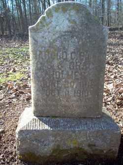 HOLMES, HAROLD C - Cross County, Arkansas | HAROLD C HOLMES - Arkansas Gravestone Photos