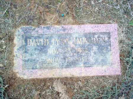 IMBODEN, DAVID LYNN - Cross County, Arkansas | DAVID LYNN IMBODEN - Arkansas Gravestone Photos