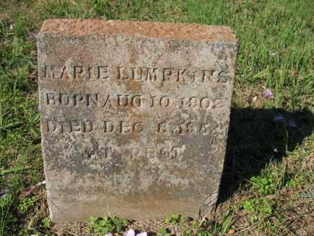 LUMPKINS, MARIE - Cross County, Arkansas | MARIE LUMPKINS - Arkansas Gravestone Photos