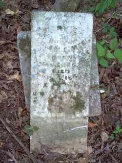 MEEK, MARY C - Cross County, Arkansas | MARY C MEEK - Arkansas Gravestone Photos