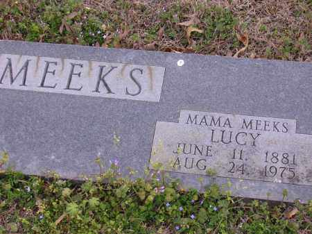 MEEKS, LUCY - Cross County, Arkansas | LUCY MEEKS - Arkansas Gravestone Photos