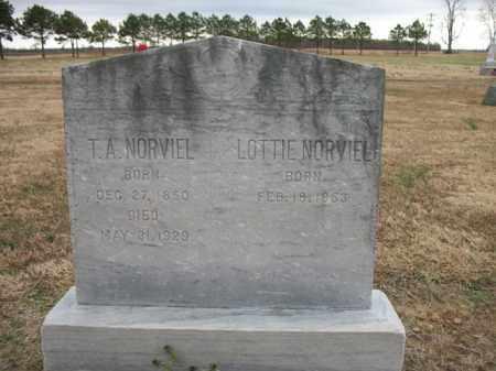 NORVIEL, T A - Cross County, Arkansas | T A NORVIEL - Arkansas Gravestone Photos