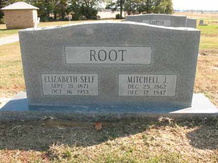 ROOT, MITCHELL J - Cross County, Arkansas | MITCHELL J ROOT - Arkansas Gravestone Photos