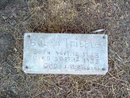 TRIBBLE, BULAH - Cross County, Arkansas | BULAH TRIBBLE - Arkansas Gravestone Photos