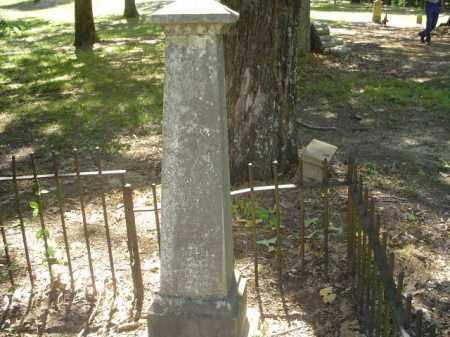 WARREN, NATHANIEL S - Cross County, Arkansas   NATHANIEL S WARREN - Arkansas Gravestone Photos