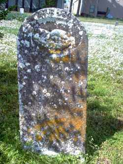 WATLINGTON, MOLLIE J - Cross County, Arkansas | MOLLIE J WATLINGTON - Arkansas Gravestone Photos