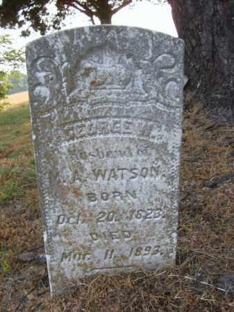 WATSON, GEORGE W - Cross County, Arkansas | GEORGE W WATSON - Arkansas Gravestone Photos