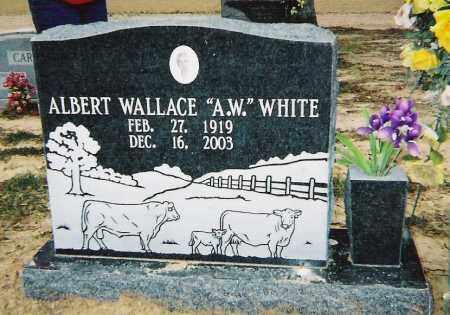 WHITE, ALBERT WALLACE - Cross County, Arkansas | ALBERT WALLACE WHITE - Arkansas Gravestone Photos