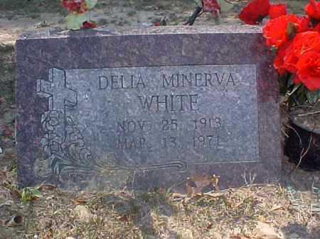 WHITE, DELIA MINERVA - Cross County, Arkansas | DELIA MINERVA WHITE - Arkansas Gravestone Photos