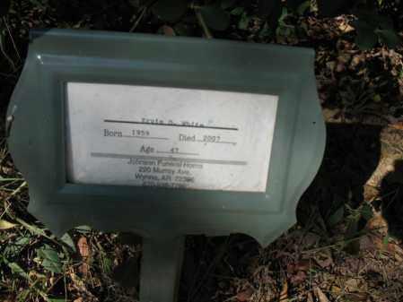 WHITE, ERVIN D - Cross County, Arkansas   ERVIN D WHITE - Arkansas Gravestone Photos