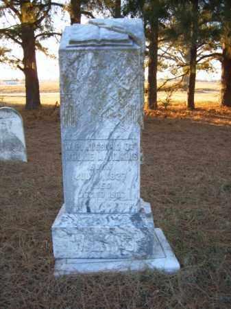 WILKINS, W P - Cross County, Arkansas   W P WILKINS - Arkansas Gravestone Photos