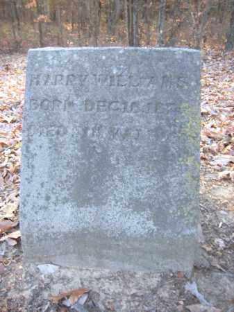 WILLIAMS, HARRY - Cross County, Arkansas | HARRY WILLIAMS - Arkansas Gravestone Photos