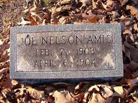 AMIS, JOE NELSON - Dallas County, Arkansas | JOE NELSON AMIS - Arkansas Gravestone Photos