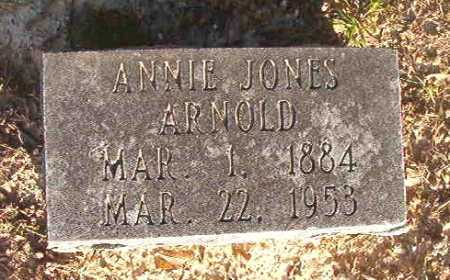JONES ARNOLD, ANNIE - Dallas County, Arkansas | ANNIE JONES ARNOLD - Arkansas Gravestone Photos