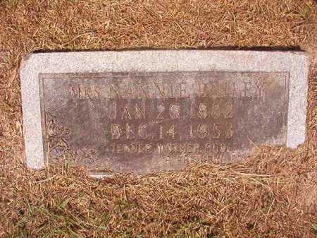 BAILEY, NANNIE - Dallas County, Arkansas | NANNIE BAILEY - Arkansas Gravestone Photos