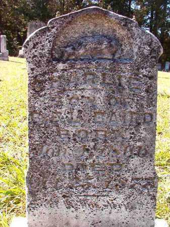 BAIRD, CHARLIE - Dallas County, Arkansas | CHARLIE BAIRD - Arkansas Gravestone Photos