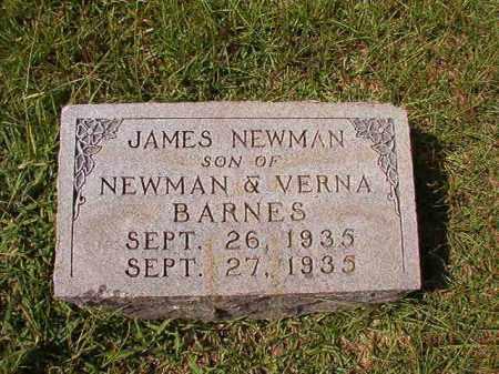BARNES, JAMES NEWMAN - Dallas County, Arkansas | JAMES NEWMAN BARNES - Arkansas Gravestone Photos