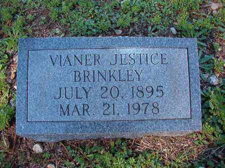 JESTICE BRINKLEY, VIANER - Dallas County, Arkansas | VIANER JESTICE BRINKLEY - Arkansas Gravestone Photos