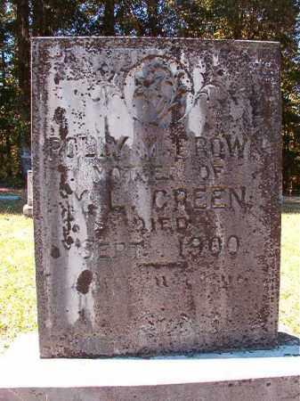 BROWN, POLLY M - Dallas County, Arkansas | POLLY M BROWN - Arkansas Gravestone Photos