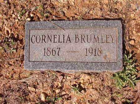 BRUMLEY, CORNELIA - Dallas County, Arkansas | CORNELIA BRUMLEY - Arkansas Gravestone Photos