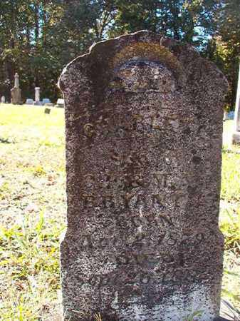 BRYANT, CHARLEY L - Dallas County, Arkansas | CHARLEY L BRYANT - Arkansas Gravestone Photos