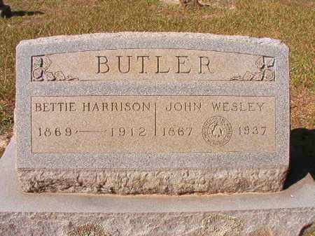 BUTLER, BETTIE - Dallas County, Arkansas | BETTIE BUTLER - Arkansas Gravestone Photos