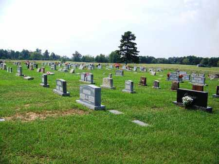 *CHAPEL HILL, CEMETERY OVERVIEW - Dallas County, Arkansas | CEMETERY OVERVIEW *CHAPEL HILL - Arkansas Gravestone Photos